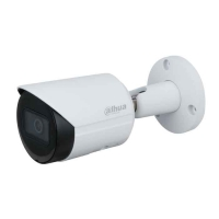 Camera IP Dahua IPC-HFW2230SP-S-S2 2.0 Megapixel